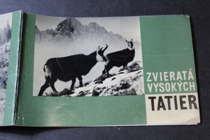 náhled knihy - Zvieratá Vysokých Tatier