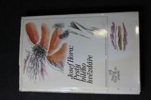 náhled knihy - Prsty bílého hvězdáře : výbor z lyriky