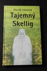 náhled knihy - Tajemný Skellig