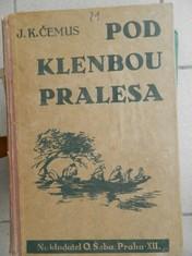 náhled knihy - Pod klenbou pralesa : pouť českého hocha Jižní Amerikou : dobrodružný román pro mládež