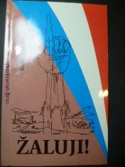 náhled knihy - Žaluji! kritické poznámky k mýtům o Evropské unii, NATO a USA v souvislosti s událostmi v Jugoslávii (1999)