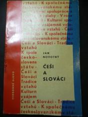 náhled knihy - Češi a Slováci