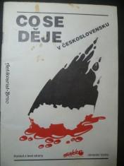 náhled knihy - Co se děje v Československu (pohled z levé strany)