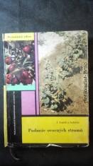 náhled knihy - Podnože ovocných stromů
