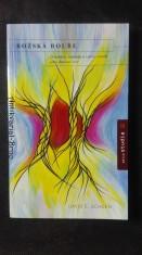 náhled knihy - Božská bouře