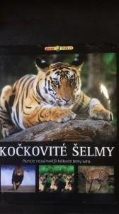 náhled knihy - Kočkovité šelmy