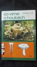 náhled knihy - Co víme o houbách