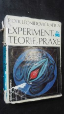 náhled knihy - Experiment, teorie a praxe
