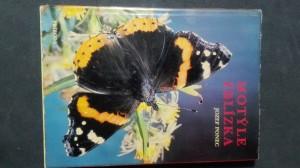 náhled knihy - Motýle zblízka