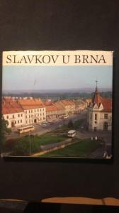 náhled knihy - Slavkov u Brna