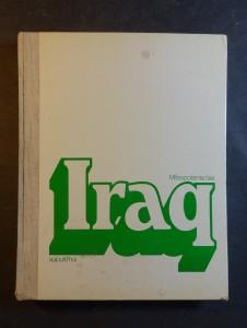 náhled knihy - Mésopotamie hier Iraq aujourd'hui