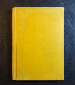 náhled knihy - Skautský rok Družiny kamzíků : Příběhy sedmi skautů v Lužických horách
