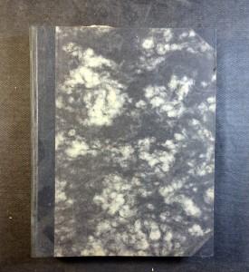 náhled knihy - Nový lid (kompletní roční XXVIII. - 1931)