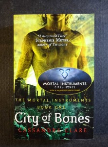 náhled knihy - City of Bones