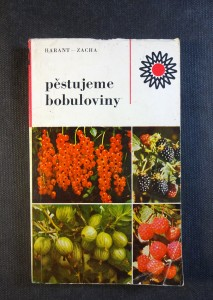 náhled knihy - Pěstujeme bobuloviny