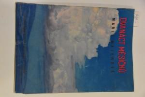 náhled knihy - Dvanáct měsíčků