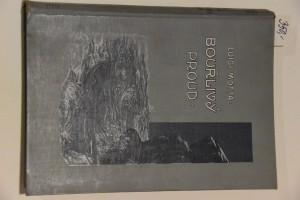 náhled knihy - Bouřlivý proud