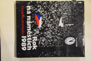 náhled knihy - Rok na náměstích : Československo 1989