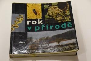 náhled knihy - Rok v přírodě