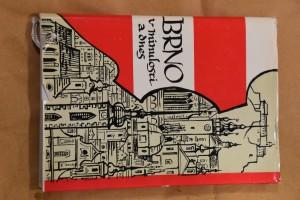 náhled knihy - Brno v minulosti a dnes IX