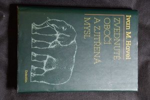 náhled knihy - Zvednuté obočí a zjitřená mysl