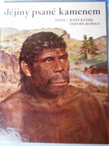 náhled knihy - dějiny psané kamenem