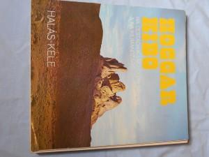 náhled knihy - HOGGAR KIBO: NA CESTÁCH K VRCHOLOM SAHARY A NA KILIMANDŽÁRO