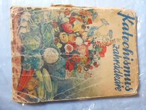 náhled knihy - Katechismus zahrádkáře : Stručné návody k úspěšnému pěstování květin, zelenin, keřů a stromů ovocných i okrasných
