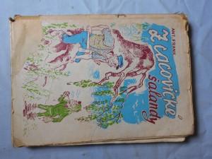 náhled knihy - Z šalandy cacovského mlýna a jiné čtení