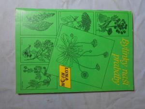 náhled knihy - Bylinky naší prabáby