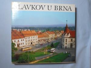 náhled knihy - Slavkov u Brna : město a okolí