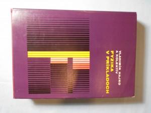 náhled knihy - Fyzika v príkladoch