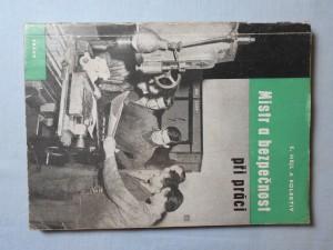 náhled knihy - Mistr a bezpečnost při práci