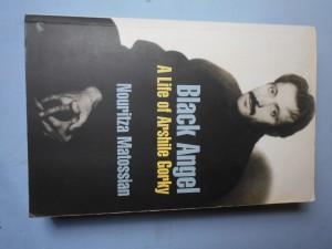 náhled knihy - Black angel : A life of Arschile Gorky