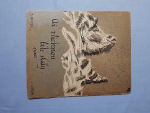 náhled knihy - Ať ztichnou bílé skály : Tango