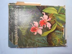 náhled knihy - Blüten aus tropenfernen