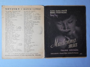 náhled knihy - Madona Mia