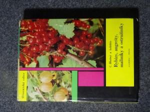 náhled knihy - Rybízy, angrešty, maliníky a ostružiníky
