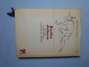 náhled knihy - Kniha Jóbova