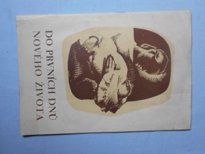 náhled knihy - Do prvních dnů nového života