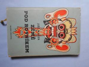 náhled knihy - Země pod rovníkem aneb úplné a podrobné vypsání cesty na Jávu a Bali, léta Páně 1955 podniknuté, spolu s vylíčením všech příhod, ... s různým pozorováním na moři, zemi i ve vzduchu