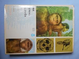 náhled knihy - Jak vznikl člověk : sága rodu Homo