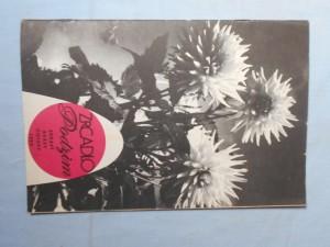 náhled knihy - Zrcadlo zdraví, krásy, čistoty : Podzim 1969