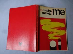 náhled knihy - Natíráme, malujeme