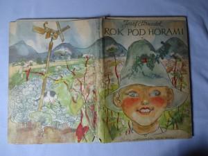 náhled knihy - Rok pod horami