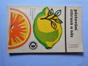 náhled knihy - Pěstování citrusů u nás
