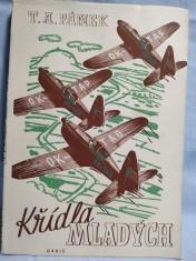 náhled knihy - Křídla mladých, Technický průvodce po civilním letectví