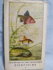 náhled knihy - Taschenbuch der tropischen Zierfische. Band 1