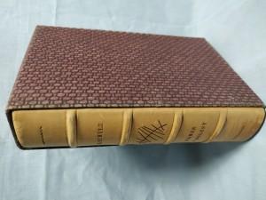 náhled knihy - Kámen a bolest: Michelangelo Buonarroti