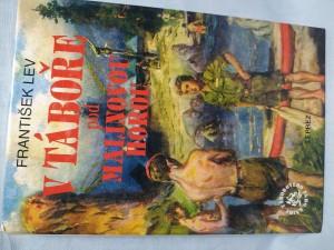 náhled knihy - V táboře pod Malinovou horou